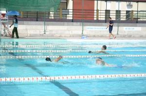 Giải thi đấu bơi lội năm 2019